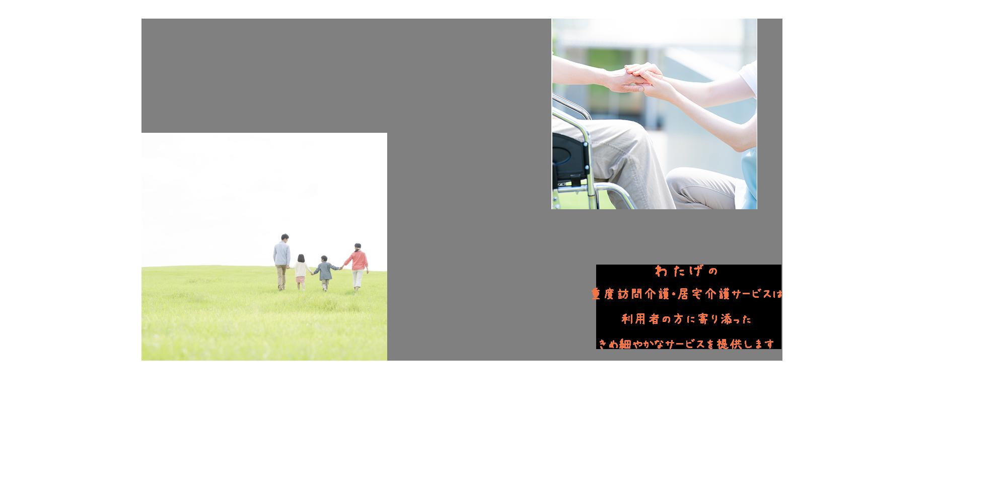わたげの重度訪問介護・居宅介護サービスは 利用者の方に寄り添った きめ細やかなサービスを提供します。